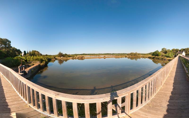 réserve ornithologique du marais de Pen en Toul